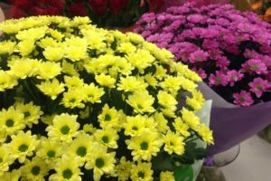Цветы на Наличной улице