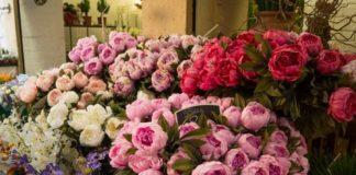 цветы 24 часа на Заневском