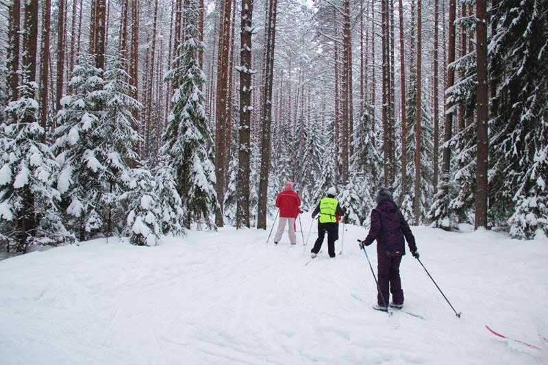 На Лыжной стреле