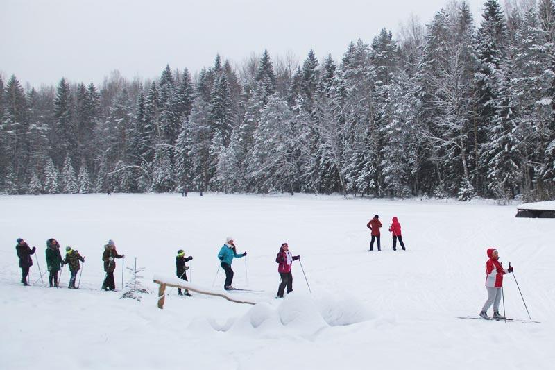 Лыжная стрела Орехово